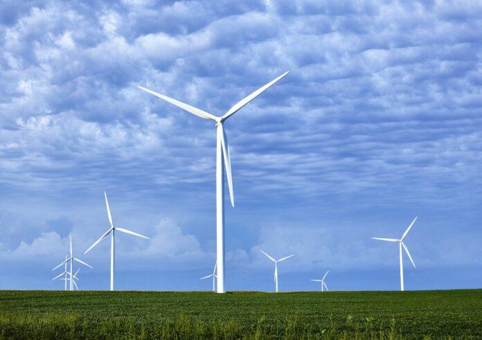 windmill farm with blue sky